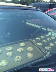 Don't forget common sense goes a long way. Need is still the mother of invention and yes... in the south... it does get hot enough inside closed cars to BAKE COOKIES.