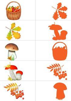 Loto de sombras: otoño | Mírame y aprenderás Autumn Activities For Kids, Toddler Learning Activities, Montessori Activities, Preschool Worksheets, Preschool Activities, Color Activities, Art For Kids, Crafts For Kids, Autumn Crafts