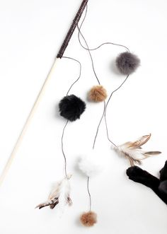 Cats are just like our family, But instead of going stores for their toys we give you 20 DIY cat toys ideas that you should make by yourself and your cats love to play with it. Diy Cat Toys, Homemade Cat Toys, Toy Diy, Raising Kittens, Cats And Kittens, Siamese Cats, Diy Jouet Pour Chat, Cat Crafts, Cat Furniture