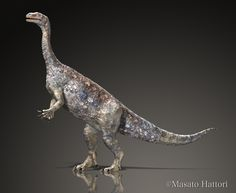 Herbivorous dinosaur of about 2.5m Unai Dinosaur Unaysaurus Late Triassic Brazil. Is one of the oldest dinosaur fossils in good condition has been discovered.
