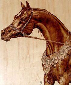 Desert Prince, Arabian by Julie Bender