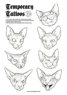 Image of Seven Deadly Sphynx - Temporary Tattoos
