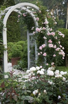 Just beautiful, garden trellis with roses, Charlotte Moss, The Zhush book review