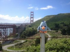 Maatje And the Golden Gate bridge, breathtaking! Gehaakte vogeltjes, 'maatje'  Haken , vogeltjes , kuiken Crochet birds