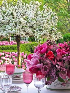 pretty with rose tinted goblets against pink tulips, lush greens and white tree blossoms for backdrop