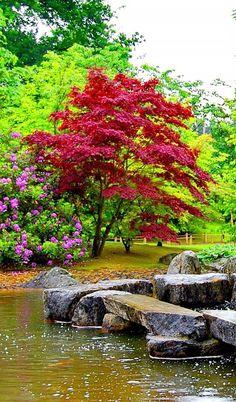 Nature's exuberance!