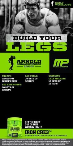 Arnold: Build your Legs