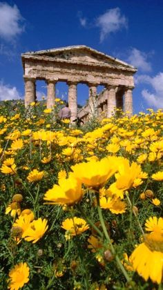 Valley of the Temple in spring ♦ Agrigento, Sicily, Italy
