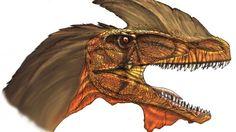 Unos reptiles gigantes habitaron la actual Cuba
