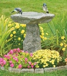 Granite birdbath gives pleasure to the many birds ...