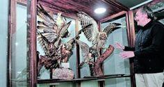 Viernes 29 de julio: 11h00 Inauguración oficial del Museo de Historia Natural en Guayaquil