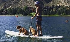 Lewis Hamilton posts snap as he enjoys water sports with pet pooches water sport Lewis Hamilton posts snap as he enjoys water sports with pet pooches Throwback Pictures, Lewis Hamilton, Formula One, Paddle Boarding, Water Sports, Great Britain, First World, Bullying, Pugs