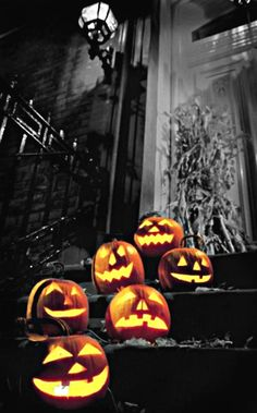 Ancient Celtic cultures in Ireland carved turnips on All Hallow's Eve, and placed an ember in them, to keep evil spirits away. When Irish immigrants first arrived in America, they discovered pumpkins and a new Halloween tradition was born!
