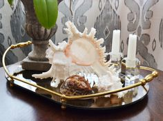 Coffee table decor: Mirrored brass tray, shells, orchid in urn and a pair of cute candle holders <3