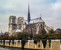 Notre Dame's backside and buttresses