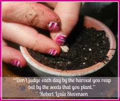 dental marketing is like planting seeds - Betty Hayden Consulting