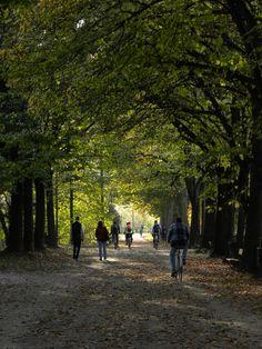Torino. Passeggiata d'autunno sulle rive del Po