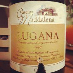 #vino #wine #italianwine #youwineapp #winelovers