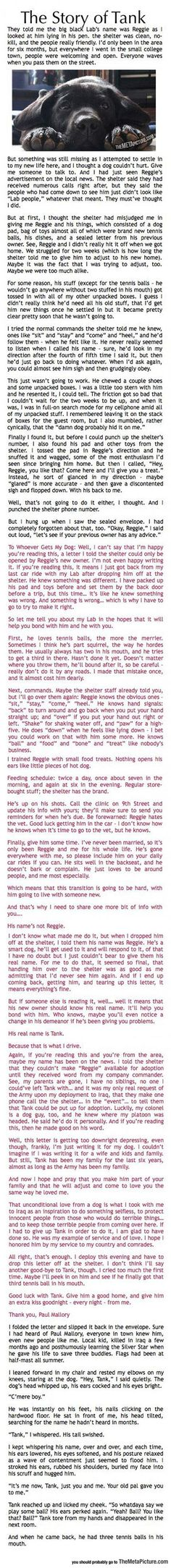 Kleenex alert ~ I wonder if he paid boarding fees to help care for Reggie.  Such love.~ This Is A Must Read