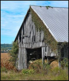 *Love this old barn