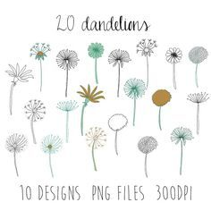 dandelions clipart : flower clipart / doodle clipart / hand sketched clipart / 10 design images / 20 pieces / spring clipart / png files from Doodle Drawings, Doodle Art, Doodle Inspiration, Flower Doodles, Doodle Flowers, Flower Clipart, Illustration, Zentangle Patterns, Zentangles
