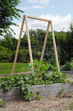 Twine Vegetable Garden Trellis | Large Wood Trellis | Cucumber Trellis