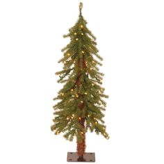 National Tree Company 3 ft. Hickory Cedar Artificial Christmas Tree with 50 Clear Lights-CED7-30LO-S - The Home Depot