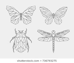 Find Vector Set Contour Polygonal Insects Abstract stock images in HD and millions of other royalty-free stock photos, illustrations and vectors in the Shutterstock collection. Dragonfly Drawing, Dragonfly Images, Dragonfly Tattoo, Butterfly Line Drawing, Geometric Drawing, Geometric Art, 3d Zeichenstift, Stylo 3d, Doodle Art Letters