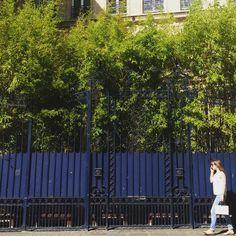 Summertime in Paris. #ecru #color #inspiration #travel #summer #paris
