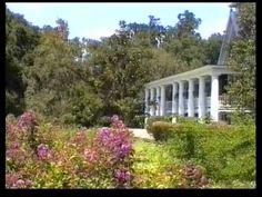Magnolia Plantation and Gardens, South Carolina