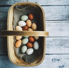 3 Best Egg Laying Chickens For Your Backyard – Chicken In The Shadows Fresh Chicken, Chicken Eggs, Best Egg Laying Chickens, Raising Chickens, Farm Photography, Farm Gardens, Slow Living, Chickens Backyard, Country Life