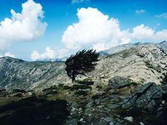 GR 20, au coeur des Montagnes Corses Aurelyen, le designer et fondateur de Misericordia, est parti sur le chemin du GR 20 en Corse. Ce sentier de grande randonnée est l'un des plus durs et plus beau d'Europe. Un chemin qui mène à la recherche de soi et du plaisir d'être libre dans une nature sauvage et déchirée. www.misionmisericordia.com