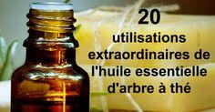 20 Extraordinary Uses of Tea Tree Essential Oil - La Diete Tea Tree Essential Oil, Essential Oils, He Tea Tree, Tee Tree Oil, Melaleuca, Arbonne, Natural Medicine, Hot Sauce Bottles, Junk Food