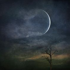 The January 2018 New Moon,takes place on Jan 16 & brings action & decision to the beginning of our year. It's lights,camera,Capricorn time!