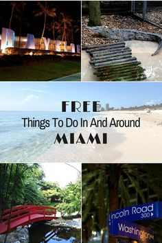 This list of free things to do in and around Miami will ensure your visit to The Magic City doesn't break the bank!  #Miami