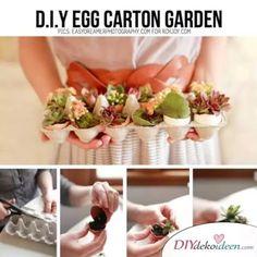 DIY Bastelideen mit Eierkartons - Eierkarton-Garten Eggs, Diy, Diys, Kawaii, Lawn And Garden, Bricolage, Egg, Do It Yourself, Homemade
