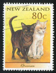 Nieuw Zeeland