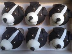 some cupcakes I made for a lady who has a border collie. Puppy Cupcakes, Animal Cupcakes, Cute Cupcakes, Toddler Birthday Cakes, Funny Birthday Cakes, 60th Birthday, Cupcake In A Cup, Cupcake Cakes, Cupcake Ideas
