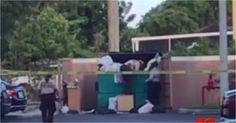 Encuentran cadáver de niña afroamericana en basurero de Miami-Dade #Internacionales #basurero #madrearrestada #MiamiDade #niñamuerta