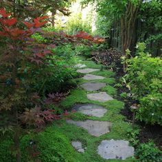 Garden Path Ideas to Mesmerize Your Garden Walkway - Momo Zain Beautify your unused wooded area and large trees by transforming them into a wonderful woodland garden. Path Design, Landscape Design, Design Ideas, Garden Edging, Garden Paths, Cacti Garden, Garden Trees, Amazing Gardens, Beautiful Gardens