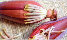 """كل جزء من شجرة الموز يمكن إستخدامه . يؤكل الزهور والفاكهة والسيقان ، ويمكن إستخدام الأوراق واللحاء لصنع الورق . ويعرف زهرة الموز بأسم """"قلوب الموز"""" ، وهى تح"""