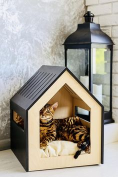 Modern dog and cat house/dog bed/cat bed/wooden pet house/mo.-Modern dog and cat house/dog bed/cat bed/wooden pet house/modern pet house/modern pets furniture/dog pillow/cat pillow/indoor dog house - Niches, Dog Furniture, Furniture Ideas, Cat Room, Eco Friendly House, Cat Tree, Animal House, Diy Stuffed Animals, Dog Bed
