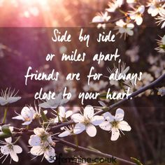 Nice Friendship quotes: 100 Friendship Quotes Every BFF Needs To Hear Sorry Quotes, Bff Quotes, Best Friend Quotes, Lifetime Friends Quotes, Goodbye Quotes For Friends, Friend Sayings, Qoutes, Friendship Love, Best Friendship Quotes