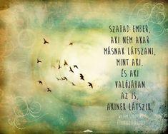 Willem Schippers idézet Good Sentences, Life Words, My Spirit, English Quotes, Life Motivation, Haiku, Favorite Quotes, Life Quotes, Wisdom
