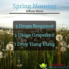 This is an amazing diffuser blend to brighten your day lessen tension and will give you the positive attitude you need to get you ready for your day. #essentialoils #diffuserblend