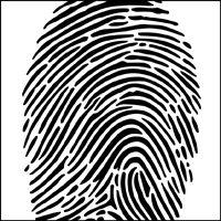 Fingerprint stencil section.