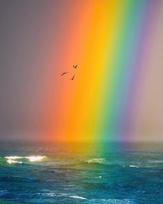 """""""A rain storm brought in this insane rainbow as the sun was setting. A perfect combination of light and water. Thank you Earth, you're beautiful. 🤔 Photo by: Rainbow Sky, Rainbow Colors, Rainbow Heart, Image Arc En Ciel, Beautiful Places, Beautiful Pictures, You're Beautiful, Theme Nature, Nature Nature"""