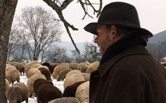 Hunderte von Schafen, die über verschneite Wiesen ziehen, begleitet von Hirte, Hund und Esel... So