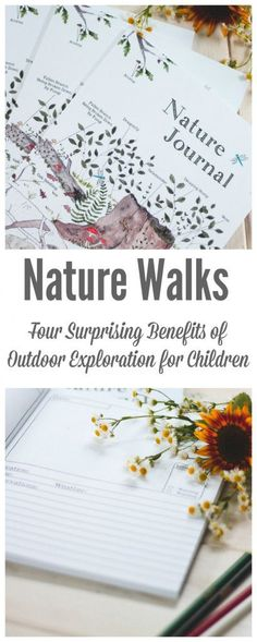 Discover the amazing benefits of nature walks for children including exercise, education, quality time, and confidence building. Spiritual Wellness, Outdoor Learning, Confidence Building, Lessons For Kids, Natural Living, Natural Kids, Walking In Nature, Healthy Kids, Healthy Living