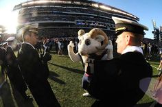 Navy Midshipmen - costumed mascot Billy the Goat at 110th army navy game in Philadelphia